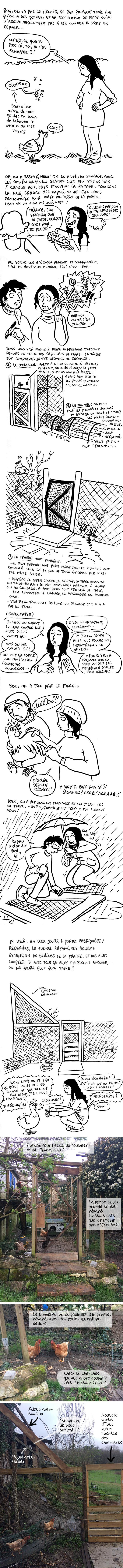 http://melaka.free.fr/blog/alcatrazpoupoules.jpg