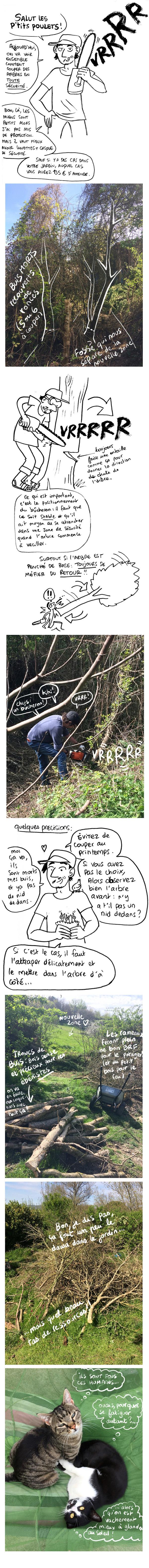 http://melaka.free.fr/blog/bucheronnage.jpg