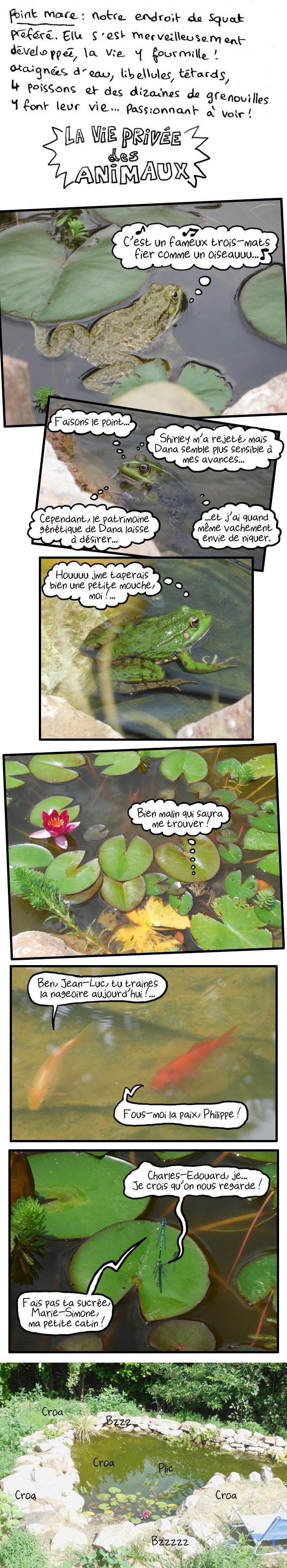 http://melaka.free.fr/blog/jardinophilie-2.jpg