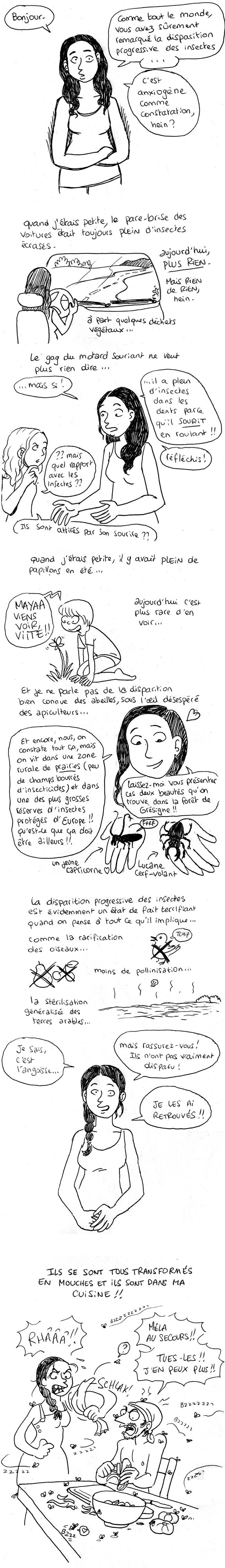 http://melaka.free.fr/blog/moumouches.jpg