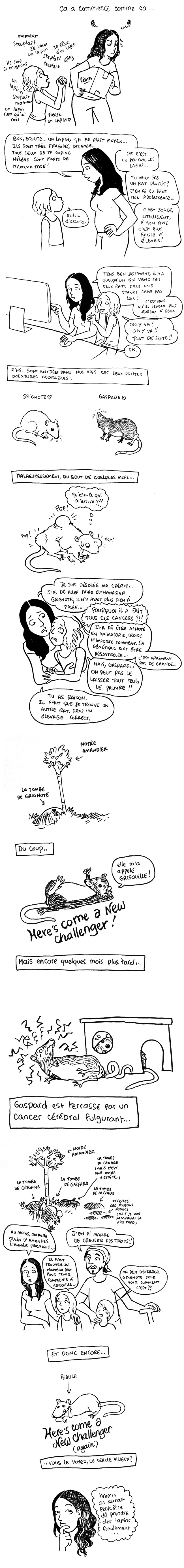 http://melaka.free.fr/blog/rats.jpg