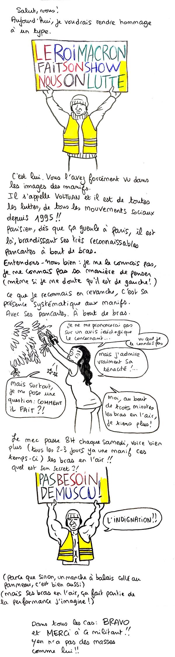 http://melaka.free.fr/blog/voltuan.jpg